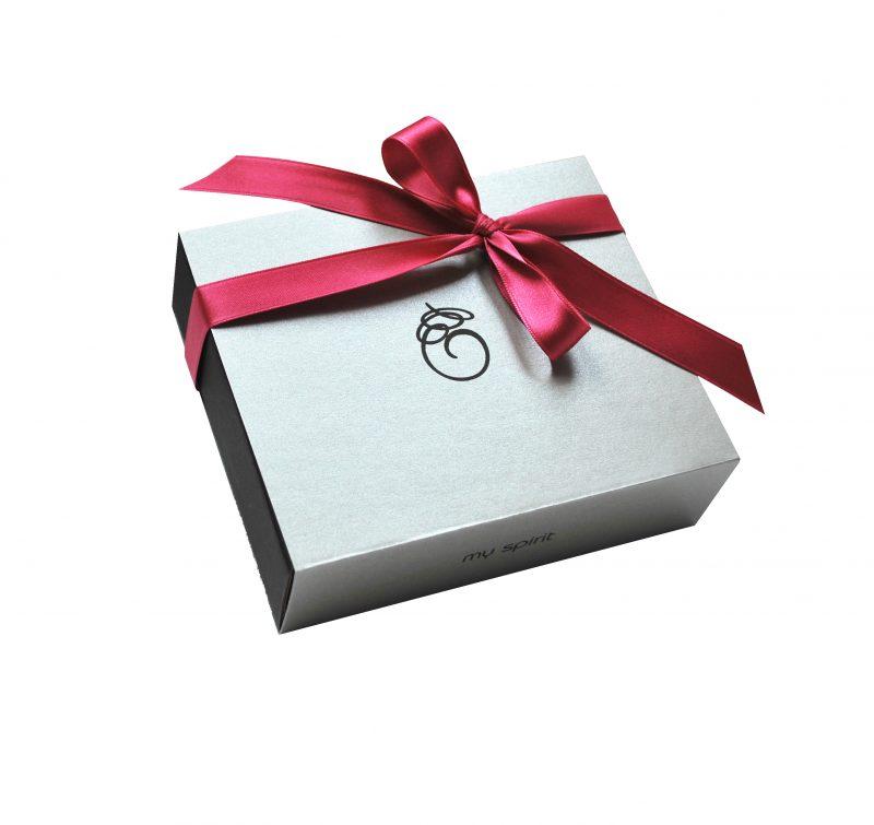 Velika srebrna darilna embalaža